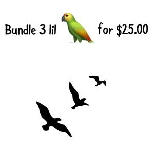SALE SALE SALE Bundle 3 lil 🦜 for $25.00